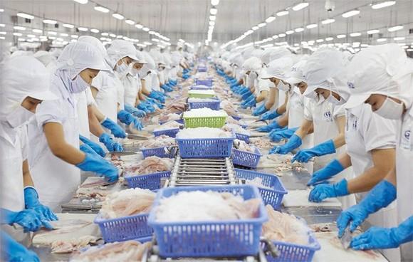 TPHCM dẫn đầu cả nước xuất khẩu thuỷ sản 5 tháng đầu năm