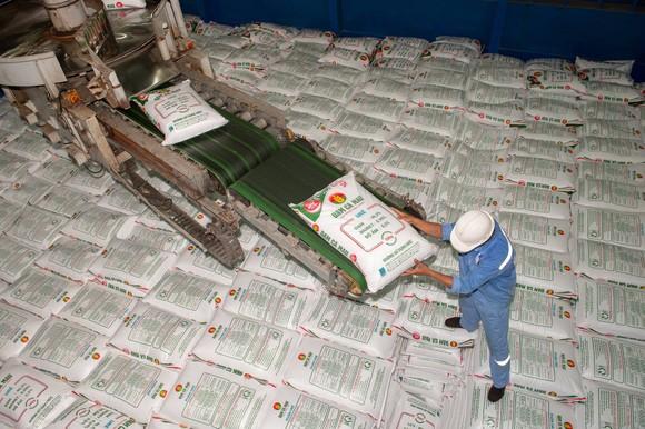 Phân bón Cà Mau giảm xuất khẩu, ưu tiên thị trường trong nước