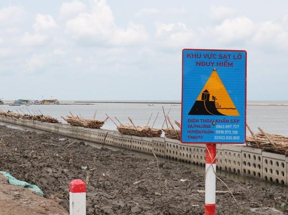 Cà Mau: Khẩn cấp khắc phục sạt lở 4 đoạn đê biển Tây ảnh 1