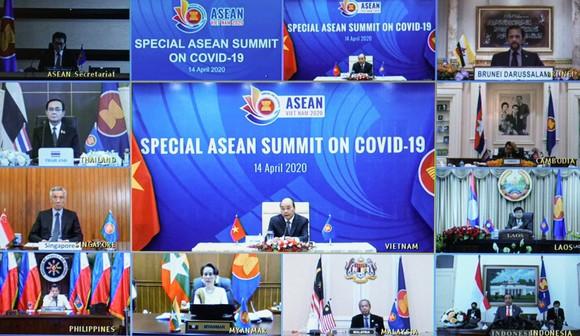 Việt Nam sẽ tiếp tục hỗ trợ các nước có dịch bệnh ảnh 1