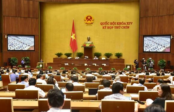 Quốc hội ngày 19-6. Ảnh: QUANG PHÚC