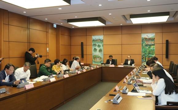 Thủ tướng: Hạn chế thủy điện nhỏ để tránh việc phá rừng ảnh 1