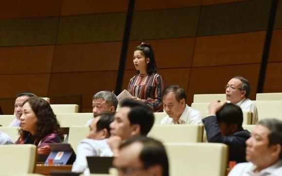 ĐBQH đề nghị Bộ trưởng trả lời có hay không ủng hộ thủy điện nhỏ   ảnh 2