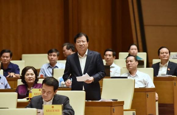 ĐBQH đề nghị Bộ trưởng trả lời có hay không ủng hộ thủy điện nhỏ   ảnh 3