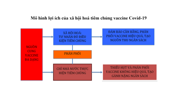 Có thể lựa chọn 'sống chung' với dịch Covid-19? ảnh 6