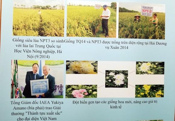 Ứng dụng năng lượng nguyên tử đem lại nhiều kết quả quan trọng về phát triển y tế và nông nghiệp ảnh 3