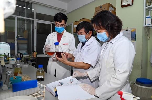 Thuốc điều trị Covid-19 từ thảo dược do Việt Nam nghiên cứu được phép thử lâm sàng ảnh 2
