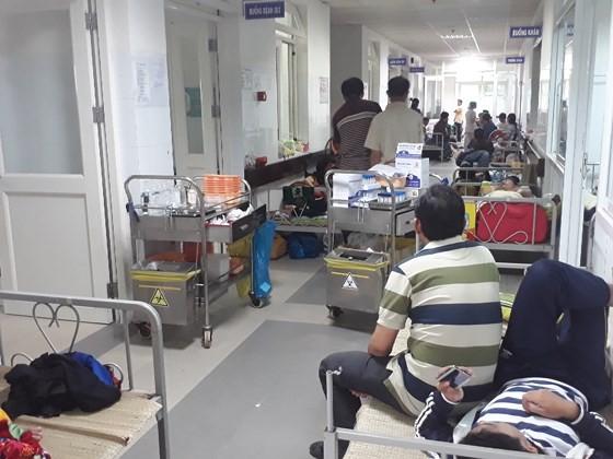 Da Nang education sector popularizes information of dengue