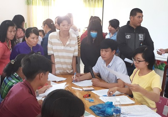 Social insurance debts by bankrupt businesses harm employees' rights (Photo: SGGP)