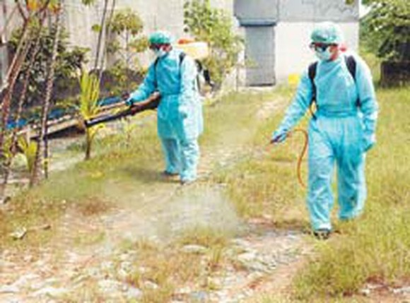 Vets spray chemicals to disinfect farms (Photo: SGGP)