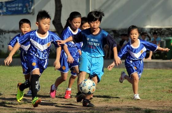 HCMC Football Federation plans to teach football in schools (Photo: SGGP)