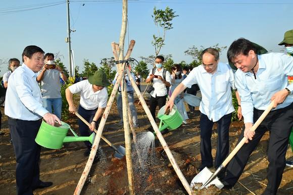 TP Thủ Đức phát động, ra quân trồng cây xanh, dọn dẹp vệ sinh môi trường ảnh 2