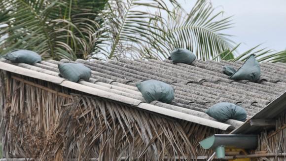 TPHCM khẩn trương phòng chống cơn bão số 9 ảnh 19