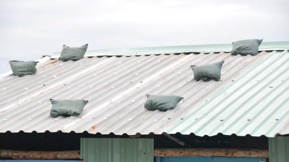 TPHCM khẩn trương phòng chống cơn bão số 9 ảnh 20