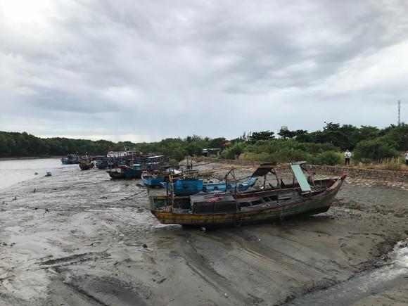 TPHCM khẩn trương phòng chống cơn bão số 9 ảnh 2