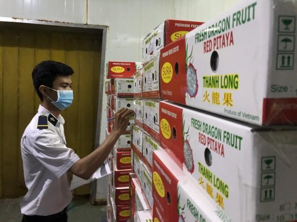 Nông sản Việt Nam xuất khẩu tăng mạnh nhờ tiếp cận thị trường 2,2 tỷ người ảnh 2