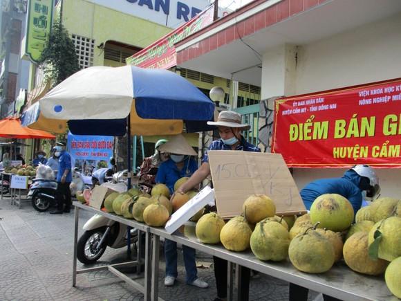 Bưởi Đồng Nai được người dân TPHCM 'giải cứu' ảnh 1