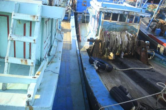 Tàu cá bị mắc kẹt giữa âu thuyền ở Quảng Ngãi ảnh 3