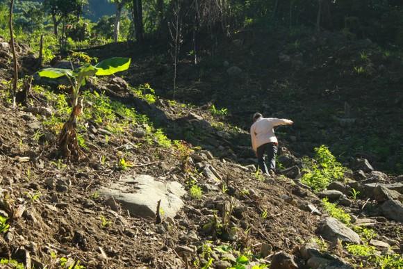 Chuyện người đàn ông hơn 45 năm sống biệt lập giữa núi rừng  ảnh 3