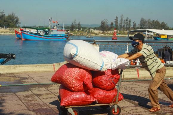 Tăng chuyến tàu đưa hơn 2.000 khách rời đảo Lý Sơn, Quảng Ngãi ảnh 11