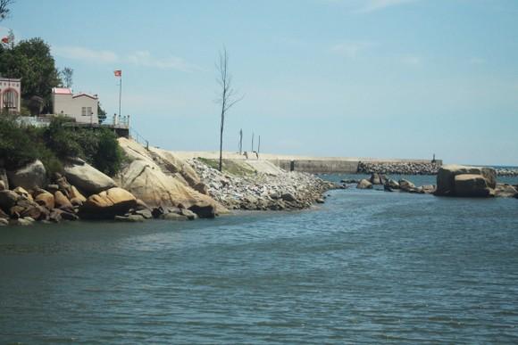 Quảng Ngãi khẩn cấp gia cố đê ở các cảng neo trú tàu thuyền trước mùa mưa bão ảnh 2
