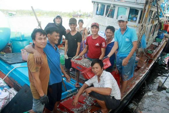 Sau bão số 6, ngư dân Quảng Ngãi tranh thủ đánh bắt ven bờ ảnh 6
