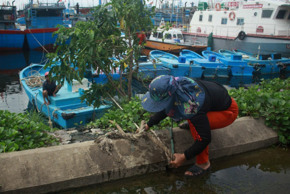 Quảng Ngãi khẩn trương neo trú tàu thuyền tránh trú bão số 9  ảnh 2