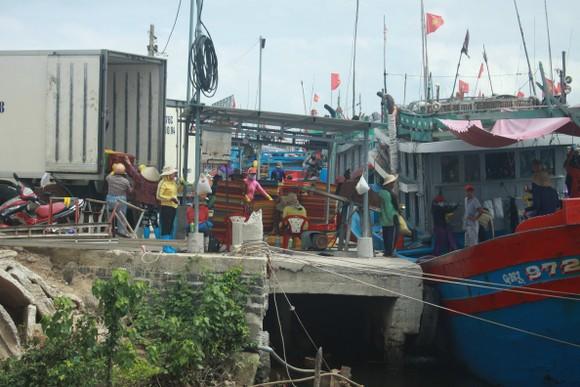 Quảng Ngãi khẩn trương neo trú tàu thuyền tránh trú bão số 9  ảnh 8