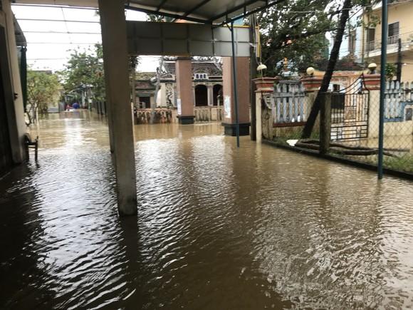 Nước lũ dâng cao, nhiều nơi ở Quảng Ngãi bị ngập sâu ảnh 8