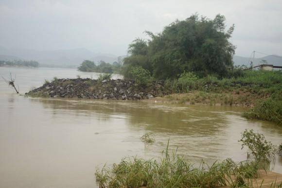 Quảng Ngãi: Sạt lở bờ sông Trà Khúc, đe dọa cuộc sống người dân ảnh 4