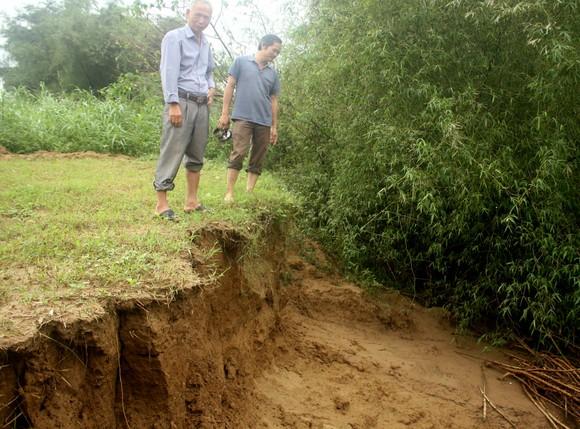 Quảng Ngãi: Sạt lở bờ sông Trà Khúc, đe dọa cuộc sống người dân ảnh 1