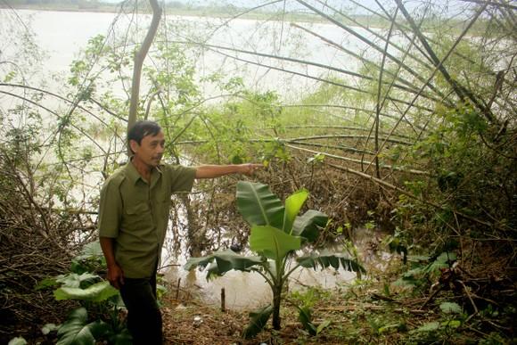 Quảng Ngãi: Sạt lở bờ sông Trà Khúc, đe dọa cuộc sống người dân ảnh 5