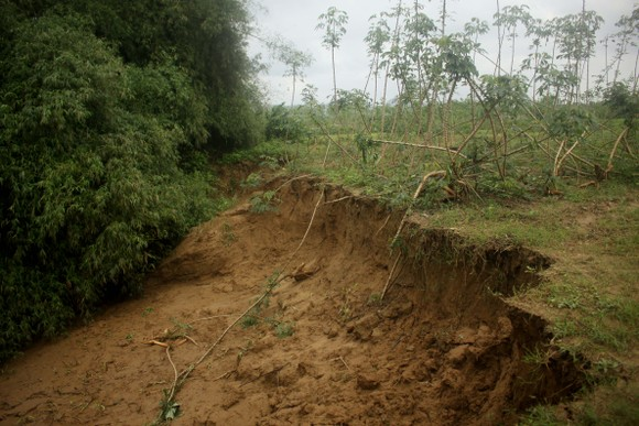Quảng Ngãi: Sạt lở bờ sông Trà Khúc, đe dọa cuộc sống người dân ảnh 2
