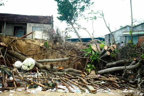 Triều cường, sóng lớn đánh sập nhà dân ở Quảng Ngãi ảnh 10