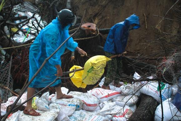 Bộ đội giúp dân chống sạt lở bờ biển Bình Hải ảnh 8