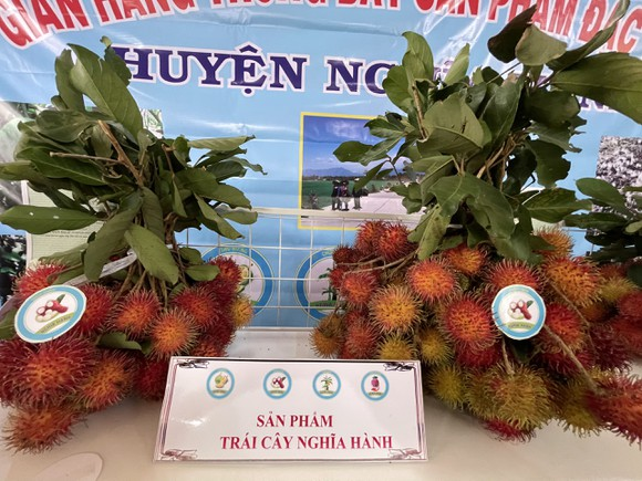 Bí thư Tỉnh ủy Quảng Ngãi chia sẻ, giải quyết khó khăn cho nông dân ảnh 3