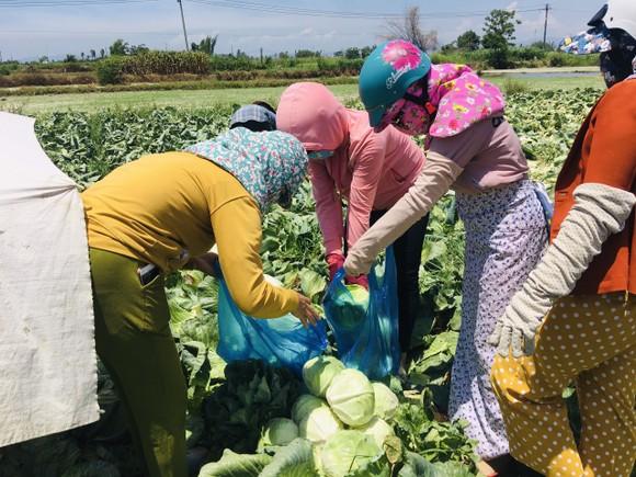 Nấu cơm và hỗ trợ thực phẩm cho người dân yên tâm cách ly phòng chống Covid-19 ảnh 17