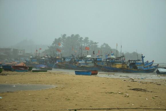 Các tỉnh miền Trung khẩn trương ứng phó bão số 5 đổ bộ  ảnh 3