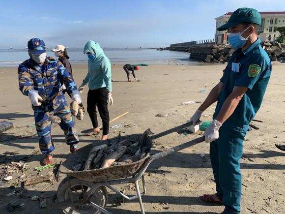 Quảng Ngãi: Chôn lấp hơn 5 tấn cá nuôi lồng bè bị chết sau bão số 5 ảnh 7