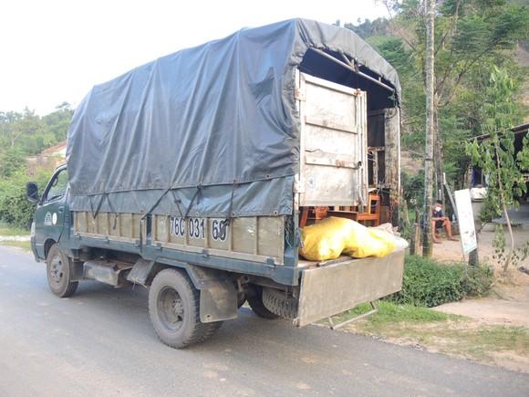 Phát hiện 6 xác cá thể linh trưởng trong xe tải ảnh 1