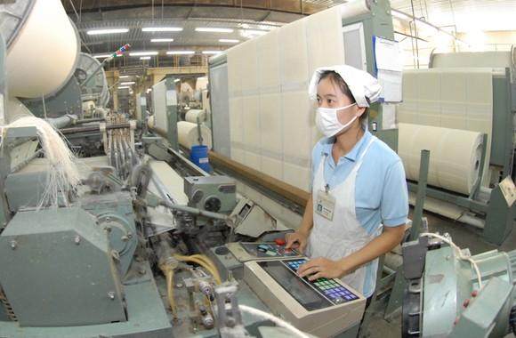 Sản xuất 'xanh', doanh nghiệp rộng đường xuất khẩu ảnh 1