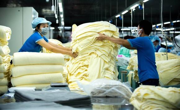 Xây dựng thương hiệu dệt may Việt ảnh 1