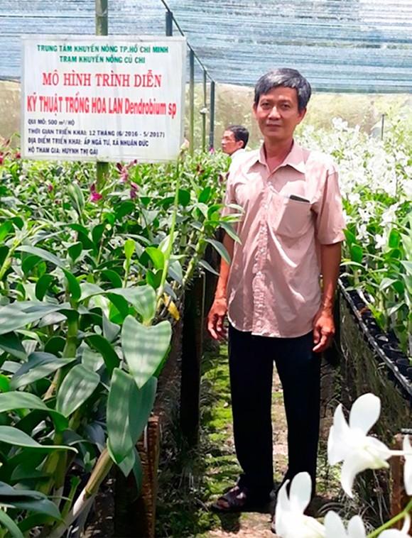 Thu nhập hơn 15 triệu đồng/tháng từ vườn lan Denrobium ảnh 1