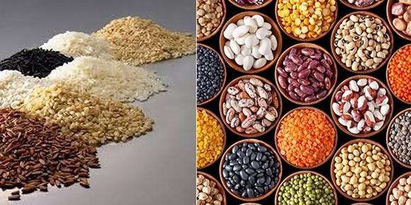 我國企業特別關注阿根廷所出產的五穀雜糧。(圖源:VOV)