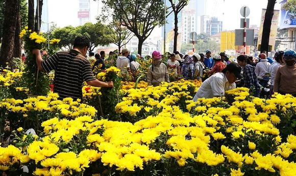 估計己亥年春節,本市將銷售約60萬至70萬盆梅花,25萬至30萬盆裁與盆景、1億3500萬棵各類菊、玫瑰、吉祥、百合、康乃馨等花。(示意圖源:互聯網)