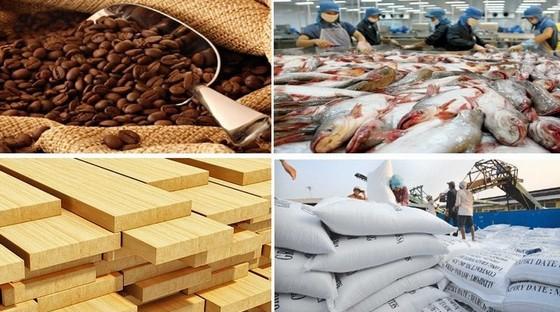 鼓勵通過國貿出口中國市場。(示意圖源:田升)