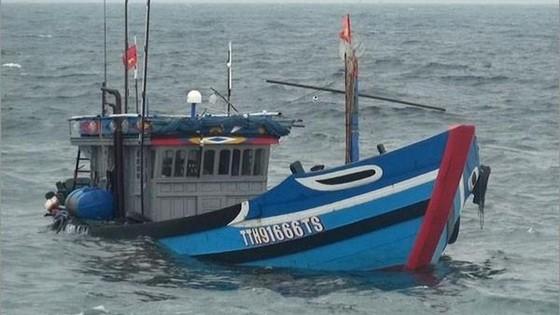 在海上遭遇沉船事故的 TT.H 91666TS號漁船。(圖源:VOV)