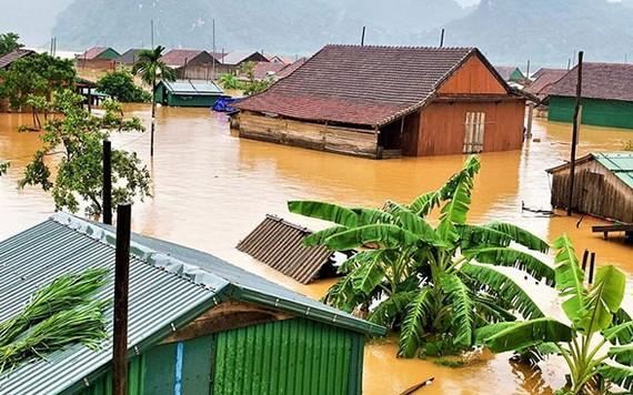 廣平省廣寧縣上千住房被淹沒在洪水中。(圖源:范長)