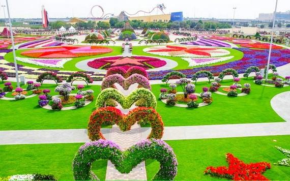 """迪拜""""奇跡花園""""一瞥。(圖源:互聯網)"""