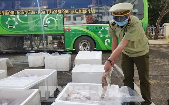 職能力量截停一輛臥鋪客車,查獲1.7噸來歷不明動物內臟。(圖源:越通社)